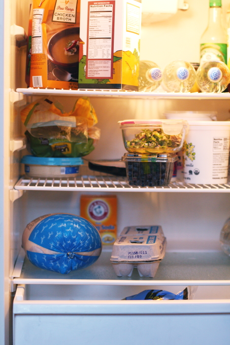 home health inspection refrigerator